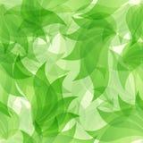 Groen bloemen naadloos patroon Stock Afbeelding