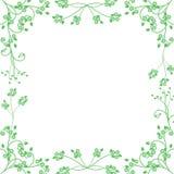 Groen bloemenframe Stock Afbeeldingen
