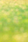 Groen bokeh abstract licht Royalty-vrije Stock Afbeeldingen