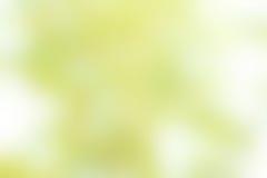 Groen Bokeh-onduidelijk beeld Royalty-vrije Stock Afbeelding