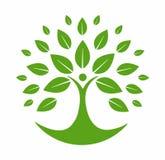 Groen boomembleem stock illustratie