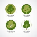 Groen boomembleem Royalty-vrije Stock Afbeelding