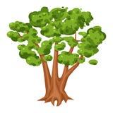 Groen boompictogram, helder landschap en hout vector illustratie
