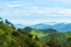 Groen bos op bergketenlandschap met blauwe en bewolkte hemel Stock Foto