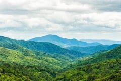 Groen bos op bergketenlandschap op bewolkte dag Royalty-vrije Stock Afbeelding