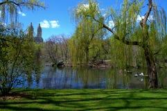 Groen Central Park Royalty-vrije Stock Afbeeldingen