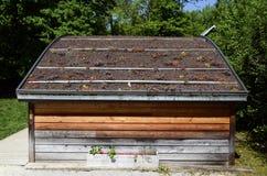 Groen dak met aanplanting op houten chalet royalty-vrije stock foto