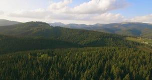 Groen de boom boslandschap over lange afstand van de aardberg, satellietbeeld 4K stock videobeelden