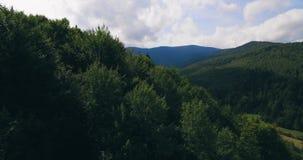 Groen de boom boslandschap over lange afstand van de aardberg, satellietbeeld 4K stock footage