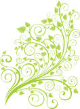 Groen de lentetakje Stock Afbeeldingen