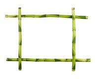 Groen die bamboekader op witte achtergrond wordt geïsoleerd. Royalty-vrije Stock Foto's