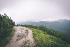 groen die berglandschap met wolken wordt behandeld - uitstekende film effe Royalty-vrije Stock Afbeelding