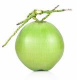 Groen die kokosnotenfruit op witte achtergrond wordt geïsoleerd Royalty-vrije Stock Afbeelding