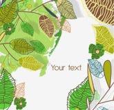 Groen doorbladert Royalty-vrije Stock Afbeeldingen