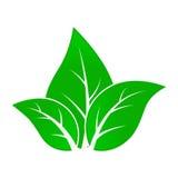 Groen doorbladert royalty-vrije illustratie