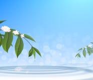 Groen doorbladert en waterdaling op blauwe hemelachtergrond Stock Foto