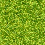Groen doorbladert voor achtergrond Royalty-vrije Stock Foto