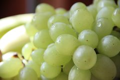 groen druivenclose-up Stock Afbeelding