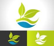 Groen Eco-Bladpictogram Stock Afbeelding