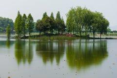 Groen Eiland stock fotografie
