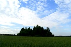 Groen Eiland 91 Stock Foto