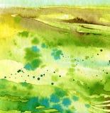 Groen en achtergrond Stock Fotografie