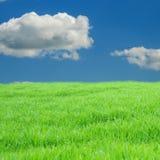Groen en blauw Stock Afbeelding