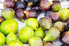 Groen en blauw fig. Royalty-vrije Stock Afbeelding