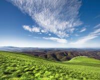 Groen en blauwe hemel Stock Fotografie