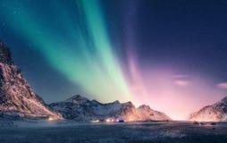 Groen en purper aurora borealis over sneeuwbergen stock afbeeldingen