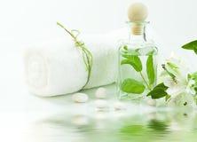 Groen en wit (het concept van het KUUROORD) Royalty-vrije Stock Afbeeldingen
