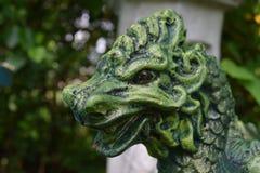 Groen en zwart draak hoofdclose-up stock afbeelding