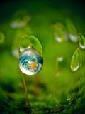 Groen energieconcept Stock Foto
