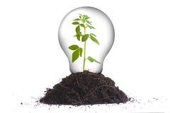 Groen energieconcept II royalty-vrije stock afbeelding