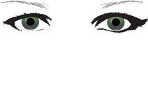 Groen eyed meisje Stock Foto's