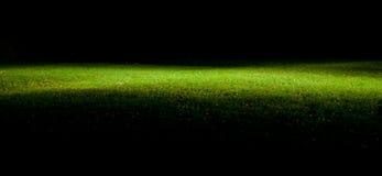 Groen gazon bij nacht Royalty-vrije Stock Afbeelding
