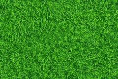Groen gazon, gras Patroontextuur naadloos herhalen Royalty-vrije Stock Foto's