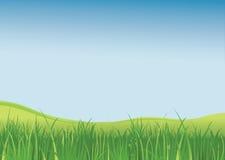 Groen gebied Stock Foto