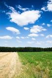 Groen gebied Stock Afbeeldingen