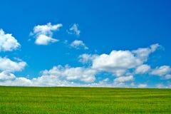 Groen gebied, blauwe hemel en witte wolken Royalty-vrije Stock Foto