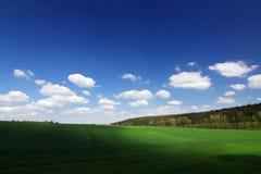 Groen gebied, blauwe hemel en witte wolken stock afbeeldingen