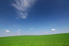 Groen gebied, blauwe hemel en witte wolken royalty-vrije stock fotografie