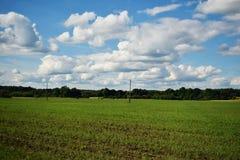 Groen Gebied en Blauwe Bewolkte Hemel stock afbeelding