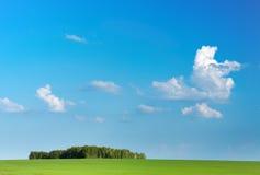 Groen gebied en blauwe hemel Royalty-vrije Stock Afbeelding