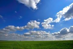 Groen gebied en blauwe hemel stock fotografie