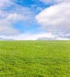 Groen gebied en blauwe hemel royalty-vrije stock foto's