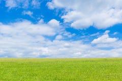 Groen gebied en blauwe hemel met lichte wolken Royalty-vrije Stock Foto
