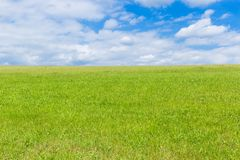 Groen gebied en blauwe hemel met lichte wolken Royalty-vrije Stock Fotografie