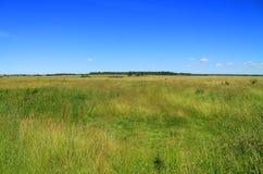 Groen gebied en het blauwe landschap van de hemelzomer Stock Foto's