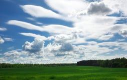 Groen gebied en mooie blauwe bewolkte hemel met lichte wolken Stock Fotografie
